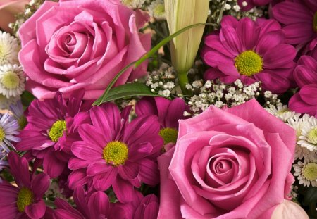 Pink Flowers - pink, yellow, flowers, purple, white, flower, basket, petal, petals, green, magenta, nature