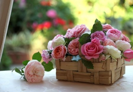 With Love - lovely, rose, beautiful, roses, photography, basket, love, flower, flowers, white, pink