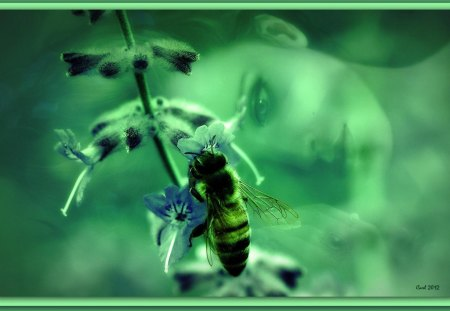 Both leave each other with rest and nothing happens - art, woman, girl, green, honeybee