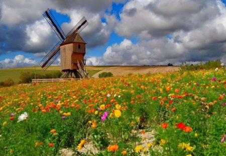 A mill among flowers - lovely, colorful, harmony, flowers, pretty, stones, mill, green, beautiful, field, summer, freshness, nature, path, delicate, meadow, nice, clouds, grass, sky, fresh