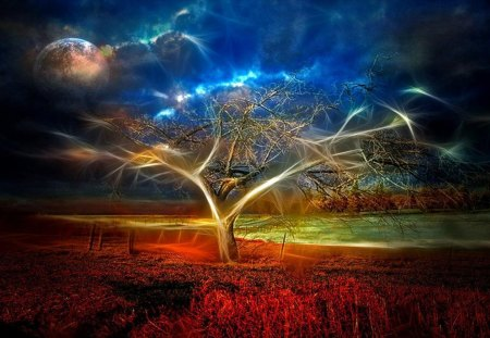 Magic Tree - art, abstract, digital, magic, fantasy, tree