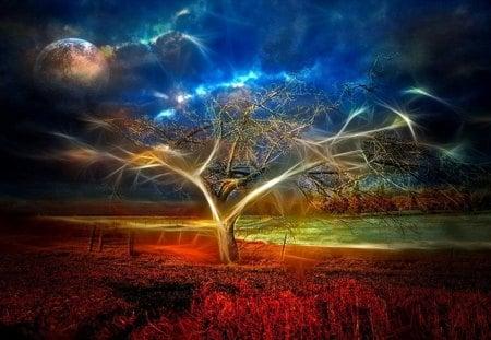 Magic Tree - digital, fantasy, magic, tree, art, abstract