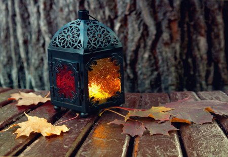 Autumn Lantern - autumn, peaceful, photography, candle, lantern, nature, beautiful, leaf, leaves