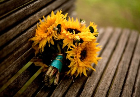Sunflowers Bouquet - lovely, bouquet, yellow, flowers, sunflower, flower, photography, bench, beautiful