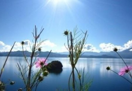 Looking to the Future with Hope and Beauty - flowers, skyview, lake, mountain range