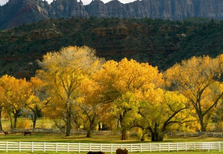 Autumn Mountainscape and Pasture - fall, mountains, trees, pasture, nature, autumn