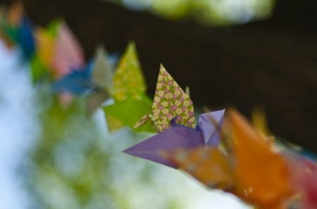 Colorful Origami - orange, color, paper, origami, purple