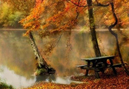 autumn lake - autumn, mirror, lake, bench, nature