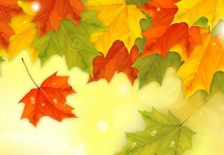 Autumn Shining Fresh - autumn, fresh, dew drops, deew, maple, breeze, gold, fall, yellow, orange, season, wind, green, new, leaves