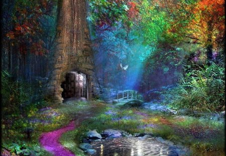 Door to....... - door, colors, path, entrance, forest, magic, wonderland, pond
