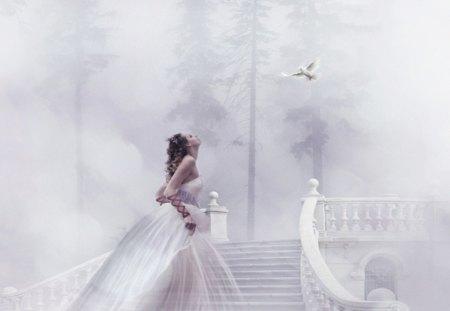 Dove Of Hope - dove, white, hope, girl