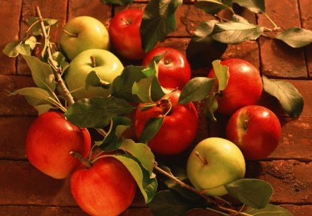Apple Bouquet - autumn, harvest, apple, fruit, fall, eating, table, apples, wood, bounty, cider, leaves