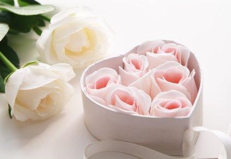 *Lovely roses* - withe, lovely, pink, roses, heart