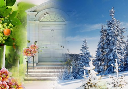 Door to Winter Beauty - door, doorway, tree, collage, forest, fleurs, orange, winter, stairs, autumn, flowers, sky, steps, trees, fall, fantasy, snow, snowing