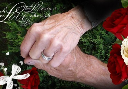 Together Forever - grandfather, love, marriage, bow, mother, grandmother, hands, lovers, ring, father, cedar, red roses, collage, ribbon, hearts, wrinkles, tree