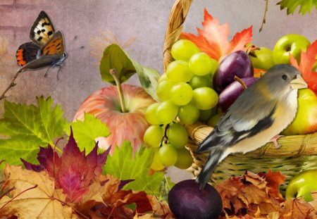 Fun Fall Fruit - harvest, plenty, prunes, food, fruit, collage, bird, apples, autumn, butterfly, grapes, fall, bright, brick wall, papillon, plums, basket, leaves
