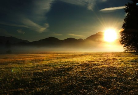 Sunrise Over The Meadow - grass, sunrise, clouds, sky