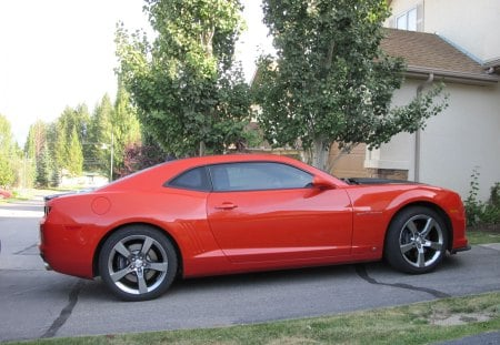 Chevrolet 2010 Camaro  - grass, orange, camaro, green, black, chevrolet, trees, tires