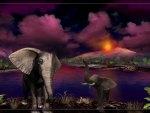 Magenta Night 1600x900