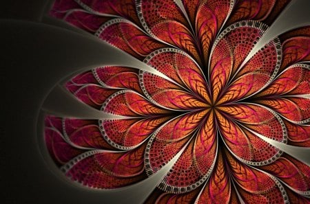 Petals - pattern, lines, petals, art, abstract, creative