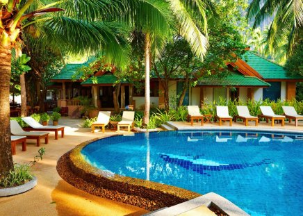 A place for holidays - pretty, hut, bungalow, cabin, palm trees, nice, aqua, swimming, tropics, reflection, rest, lovely, relax, pool, sit, water, crystal, summer time, holidays, cottage, travel, beautiful, aplms, blue, hotel, sunbed, vacation, exotic, romantic, clear, place, pleasant, summer, nature, tropical