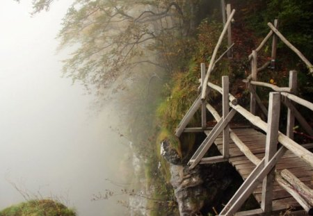 Have a Walk - bridge, fall, foggy, forest, wood, bulgaria, autumn, mountain, leaves, fog, beautiful, photogrpahy, photo, nature, wooden, tree