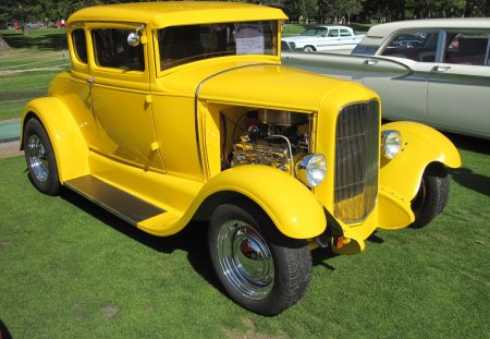 1931 Ford - grass, headlights, green, Ford, black, tires, Photography, yellow