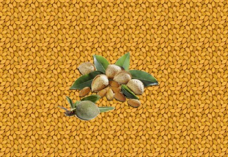 Almonds - Amandes - collage, brown, fruits, almond, green, nature