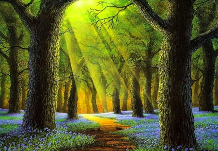 Sunday morning in forest - colorful, peaceful, shine, wonderful, tree, path, magic, sun, amazing, forest, rabbit, flowers, color, blue, colors, splendor, shimmering, animal, beautiful, lovely, wood, pretty, view