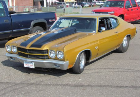 1970 Chevrolet Chevelle SS drag car - chevy, 1970, fast, drag car, gm, gold, chevelle, muscle car, classic, 70, race car, chevrolet