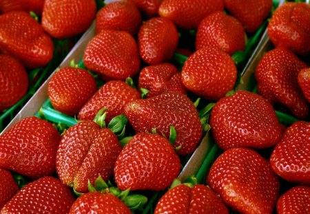 *** My Lovely Strawberries *** - color, red, fruits, strawberries