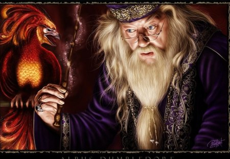 Albus Dumbledore Movies Entertainment Background Wallpapers On