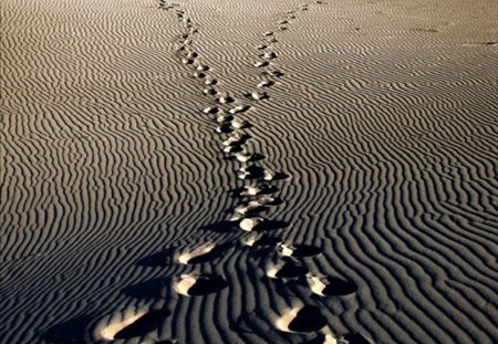 footsteps in the sand - sense, sand, collage, footsteps, meaning