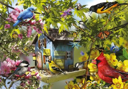 Bird house - colorful, birds, colors, painting, nice, tree, beautiful, lovely, branches, pretty, house, family, leaves