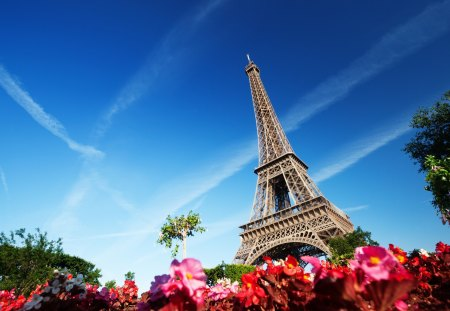 Eiffel Tower - beauty, lovely, france, flowers, pretty, eiffel, beautiful, eiffel tower, nature, peaceful, tower, clouds, view, paris, sky, splendor, architecture