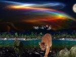 Rainbow Lake 1600x900