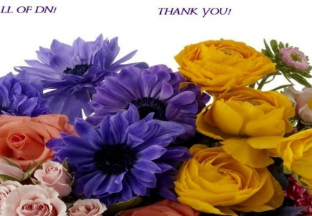 TO ALL MY FRIENDS! - colorful, purple, orange, flowers, petals, pink