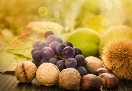 Natures Harvest - harvest, food, pear, fruit, bokeh, filberts, gold, apples, autumn, grapes, chestnuts, fall, walnuts, nuts, acorns, green, leaves