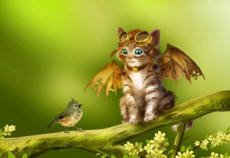 Learning to fly - fantasy, art, cat, bird