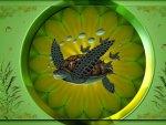 Turtles 1600x900