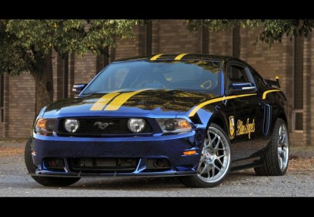 2012 ford mustang GT, blue angels edition - mustang, gt, edition, ford, 2012, angels, blue