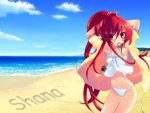 Shana Swimsuits