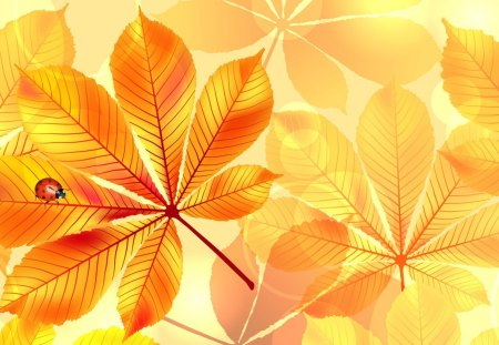 Leaves of Golden Orange - lovely, yellow, fall, gold, autumn, orange, birch, season, leaves, ladybug, abstract, seasonal, aspen