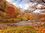 *** River in the beautiful autumn setting ***