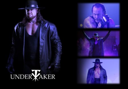 Untitled Wallpaper - wrestling, edge, wwe championship, wwe, rey mysterio, sandres, entertainment, rey mtsterio, batista, the phenom, undertaker, san andres