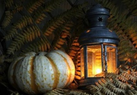 Lantern and a Pumpkin - still life, pumpkin, photography, lantern
