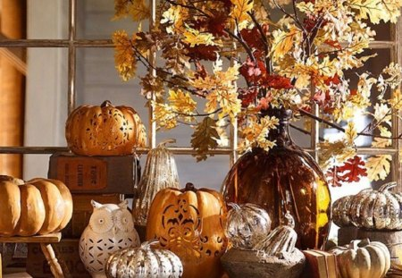 Autumn decorations - autumn, still life, decorations, photography