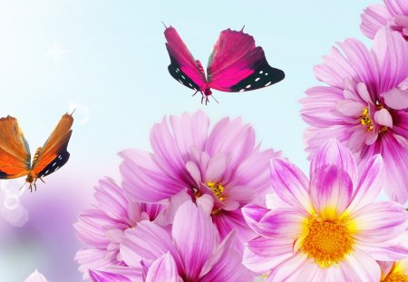 Pink flowers for fall flowers nature background wallpapers on pink flowers for fall mightylinksfo