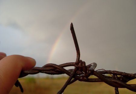 after the rain - after the rain, rainbow, barbed wire, rain drop