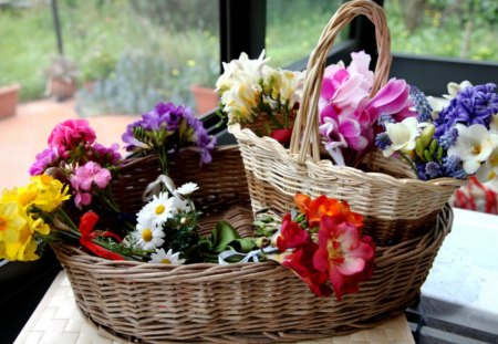 Basket with different flowers - perfume, red, colors, various, yellow, gift, buds, still life, purple, basket, flowers, beauty, nature, white, pink, blue